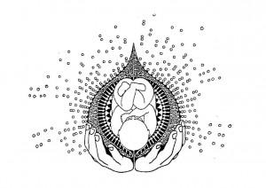 Logo Baby in Strahlenkranz Schwangerenyoga